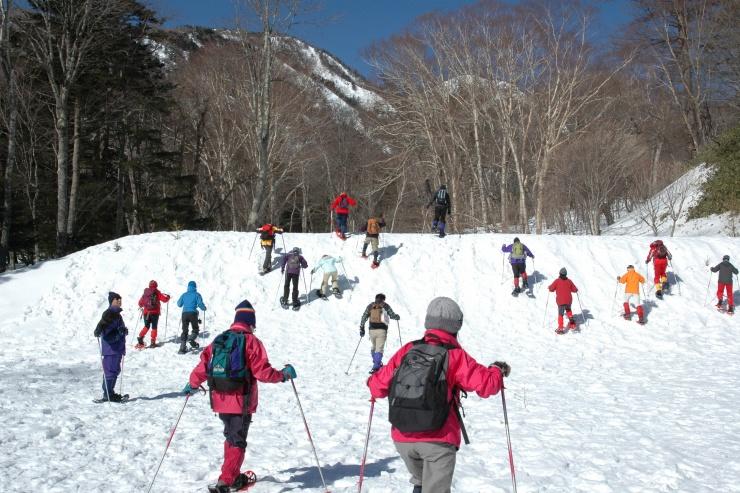 スノーシューを履いて雪の里山を歩く冬の自然観察ツアーを毎年開催しています。