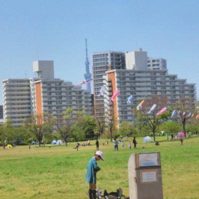 東大島(荒川)広大な公園あり