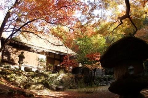 京都 南禅寺から醍醐寺へ紅葉トレイルマラニック2019 約25km