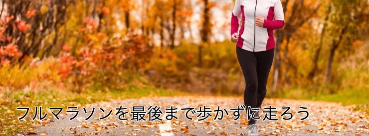 全5回 フルマラソン歩かずに完走しよう講座