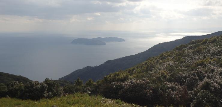 国生みの島見下ろし海まで下る
