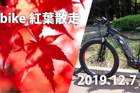 【初級-中級者向け】E-bike紅葉散走
