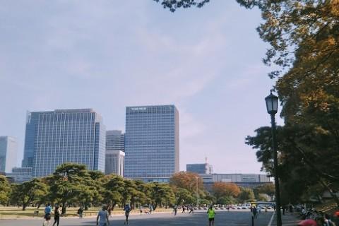 チャリティマラソン in 皇居