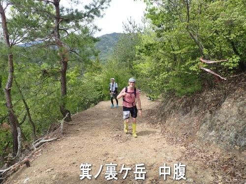 箕ノ裏ケ岳 山道