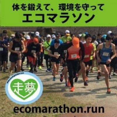 第7回淀川エコマラソン【3月8日の申し込み者無料】