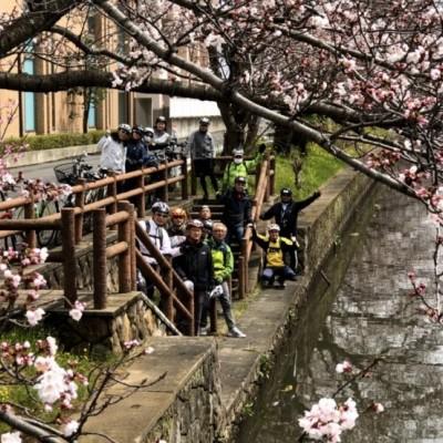 桜の見どころを縦横無尽にサイクリング。