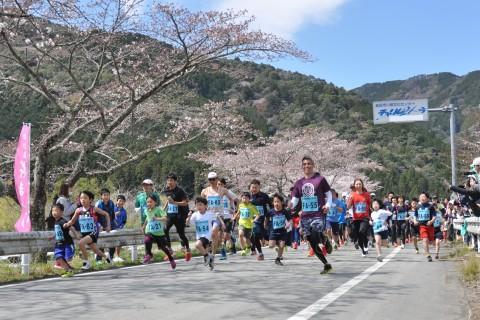 第39回川根桜まつり走ろう会