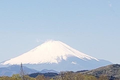 ゆっくりウォーク 広がる台地から富士を眺めて