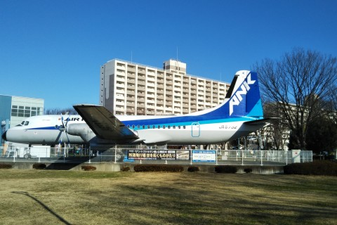 チャリティマラソン in 所沢航空記念公園