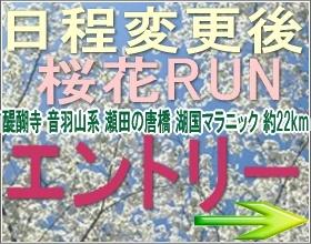 日程変更後 桜花ラン モシコムエントリーサイト