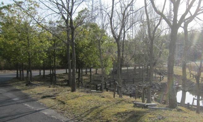 上野南公園