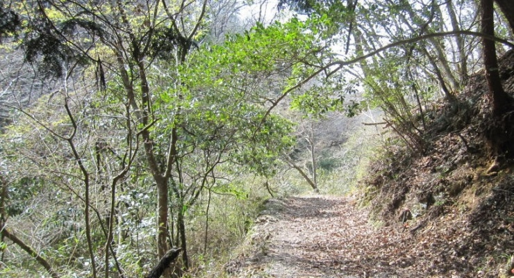 里山の林道
