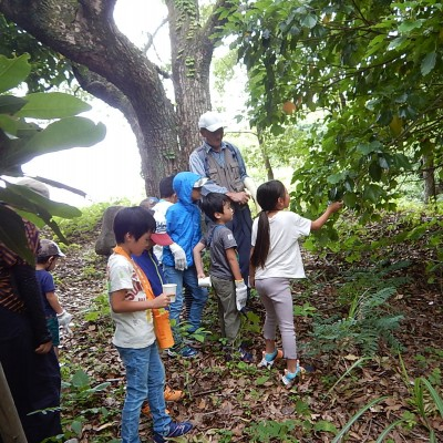 学んDE発見!!自然教室