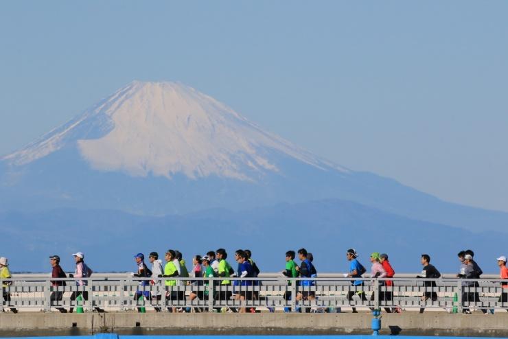 館山若潮マラソン大会 フルマラソンコース