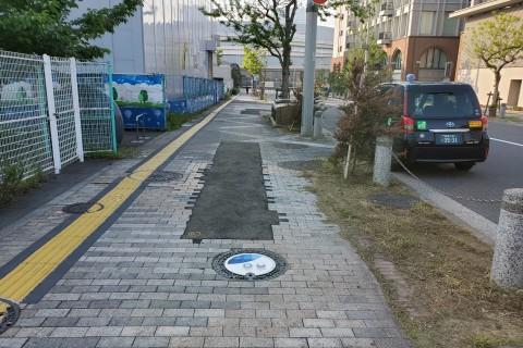 オリンピックマンホールラン 上野、日比谷公園編 約21キロ キロ約7分 2500円