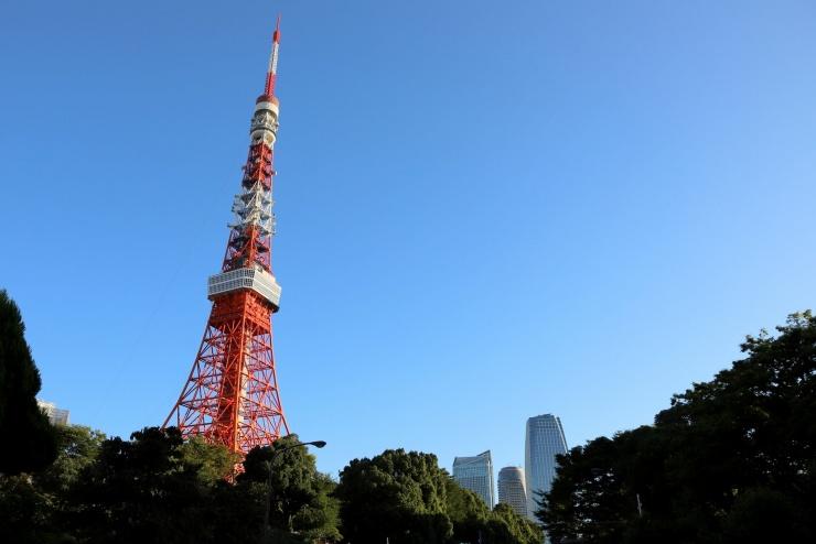 東京タワー階段競走オフィシャル講習会(1回目)(全3回)