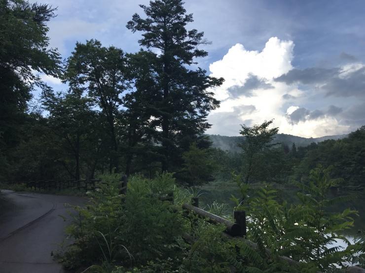 広島県 第1回 もみのき森林公園 トライトレイル