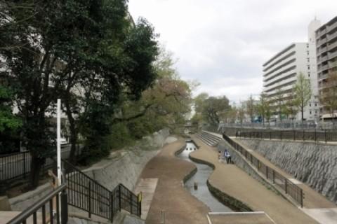 意外と人気の堀川遊歩道 マイナスイオンを浴びて気持ちよく走りましょう【サトウ練習会】