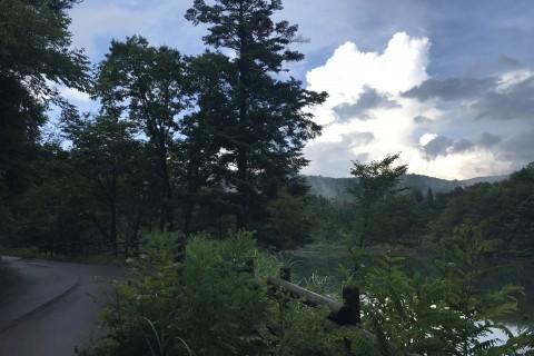 広島県 第1回 もみのき森林公園 新緑トレイル