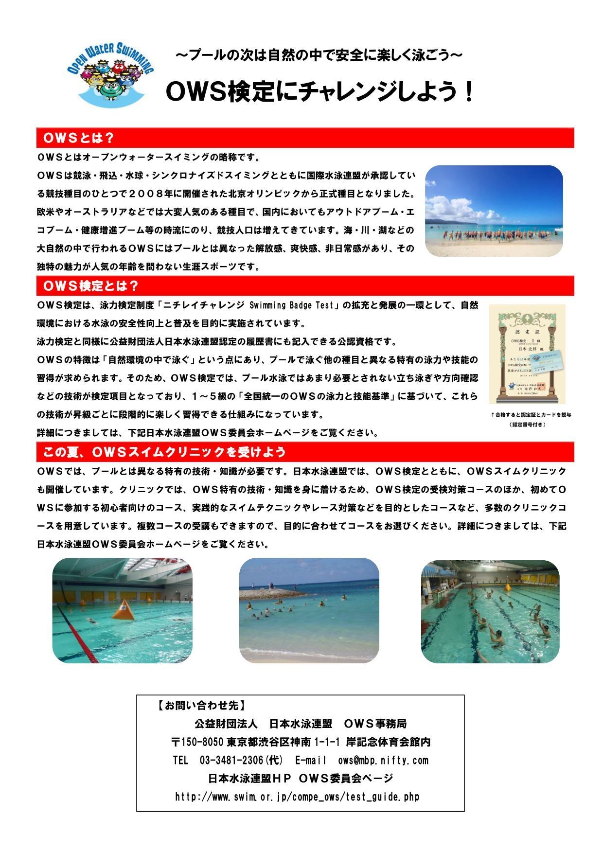 水泳 千葉 連盟 県