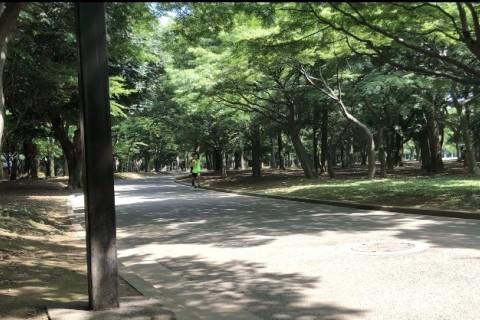 【12/5.12(土)8時30〜】くれいじー練習会@織田、代々木公園