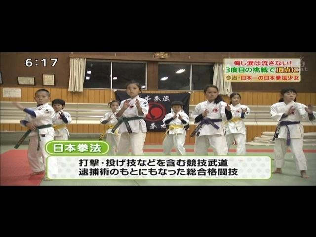 打撃・投げ技なども含む競技武道、逮捕術のもとにもなった総合格闘技 日本拳法。