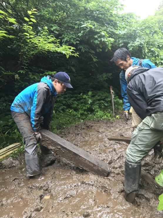 数年前の木道設置作業の様子