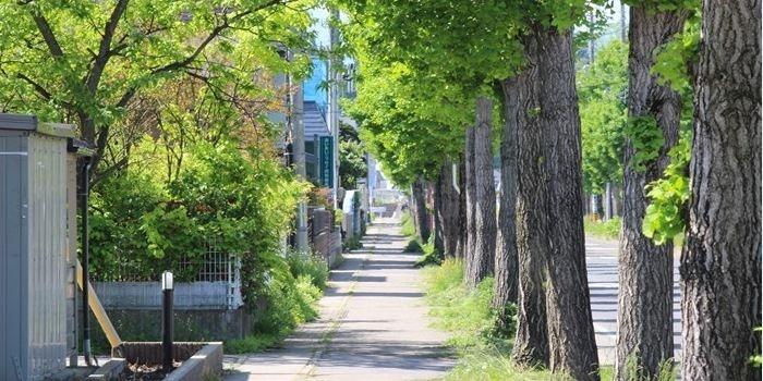 おすすめお散歩(市街地コース)
