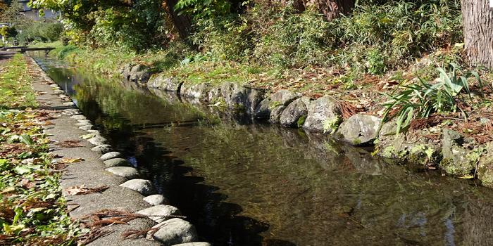江釣子・長沼 湧水と桜並木ウォーキングコース