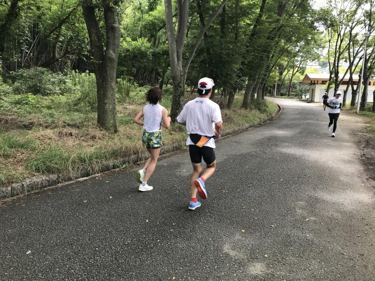 公園内の起伏ロードも走ります。