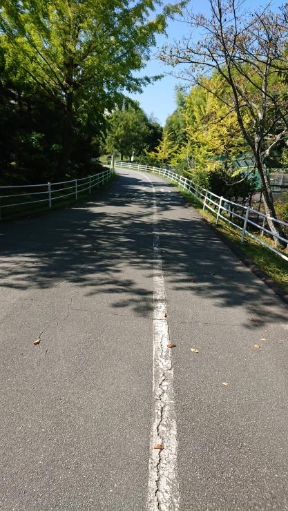 三重・松阪トライアルマラソンコース
