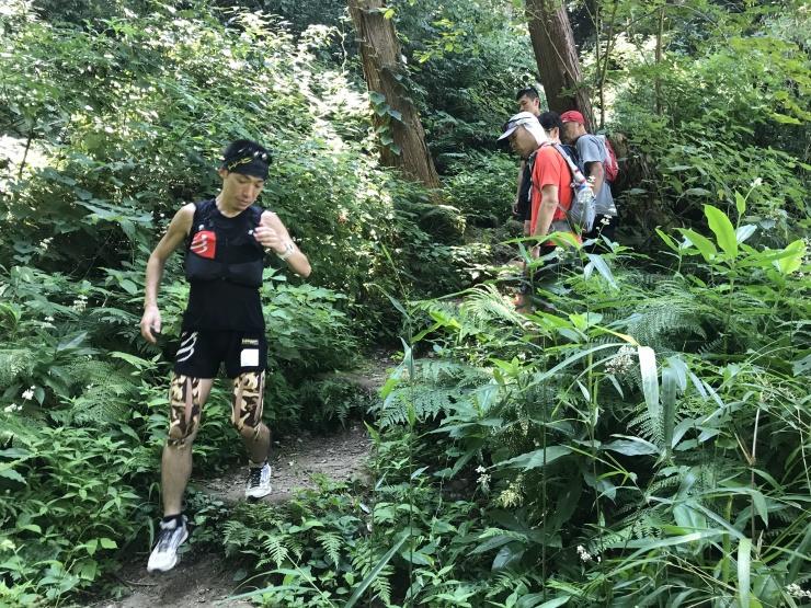 【限定2~3名】成瀬康夫のトレイルランニング基本技術習得セミプライベートセミナー in鎌倉