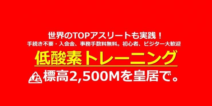 11/30(月)低酸素トレーニング〔RUN/WALK/バイク〕※1枠トレッドミル4台/バイク2台限定
