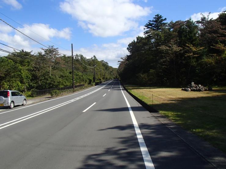 ★小山町-大御神2km★霊園参道(グリーンシャワーロード)