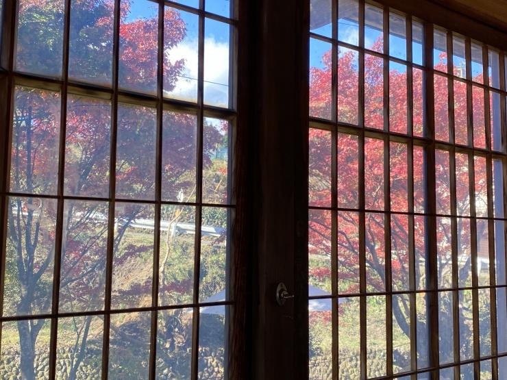 窓枠からの紅葉