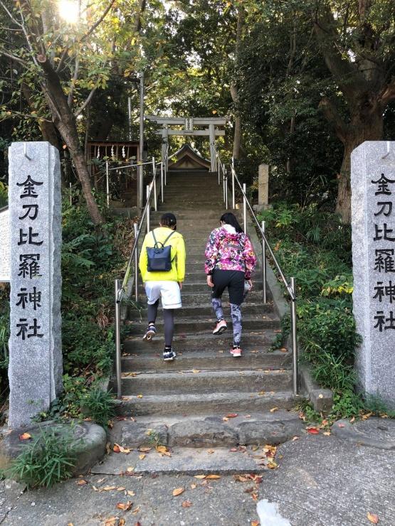 階段も頑張って登るぞ!いいトレーニングです☆