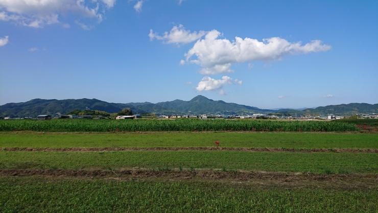 あわじ島ウォーク・洲本市・22kmコース(鮎屋の滝)