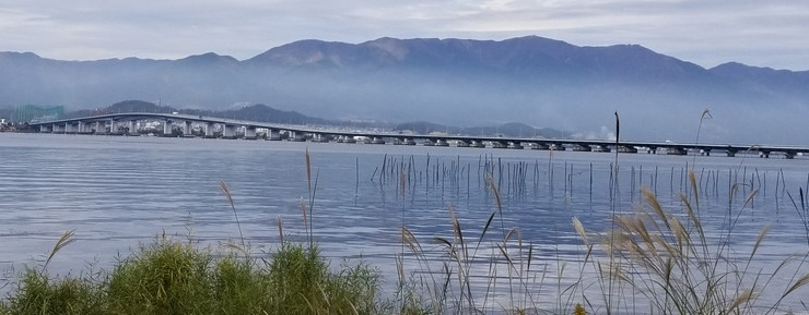 琵琶湖大橋横断と 湖国の水辺ウネウネ マラニック 約20km (草津湯元 水春 入浴券付き)
