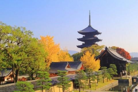 2021年初詣ラン 京都三弘法まいり 一年の無病息災 25キロ【サトウ練習会】