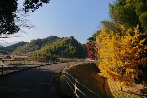 三重・松阪 Trial Marathon Half