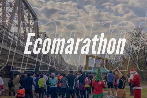 第2回足立エコマラソン
