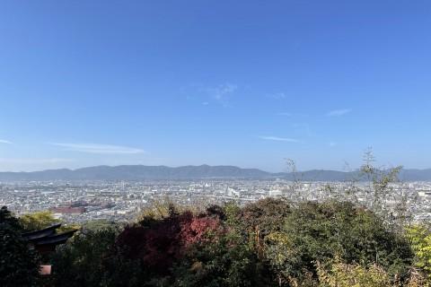 春のはじめての京都東山トレイルラン