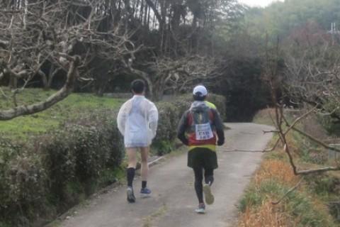 初詣 誰も知らなかった山の辺の道 約35km (明日香の湯 入浴券付き)