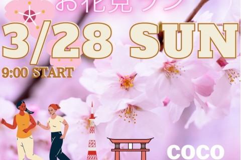 お花見ラン♪(皇居〜東京タワー〜皇居約10キロ・キロ7〜8分ペース)