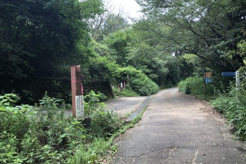 関西ランナーの聖地・冬の生駒ボルダー29キロ【サトウ練習会】