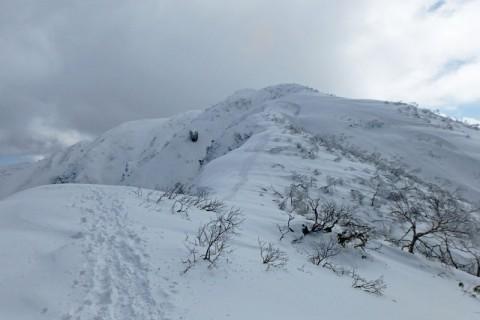≪ワンデルング≫★日本百名山★[福井]豪雪の荒島岳に挑む!【上級】