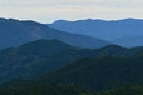 第1回世界遺産熊野オードトレイル67km