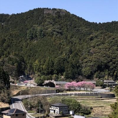 第5回「Go To 箱根5 練習会」(東温市編)※上り坂対策のオプション教室あり