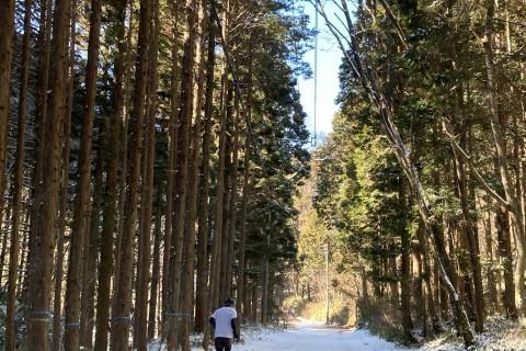 ランニング&ビーフフェスタin段戸山