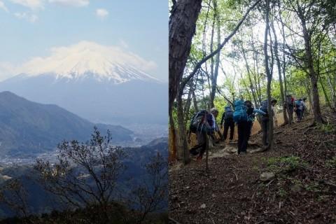 [登山・山梨]山梨百名山 富士山を望む 高川山
